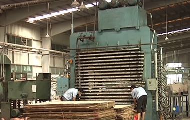 Complete Plywood Production Line Plywood Making Machines -- How Plywood is Made